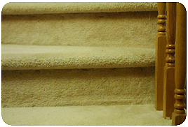 Carpet Cleaning Toronto Service